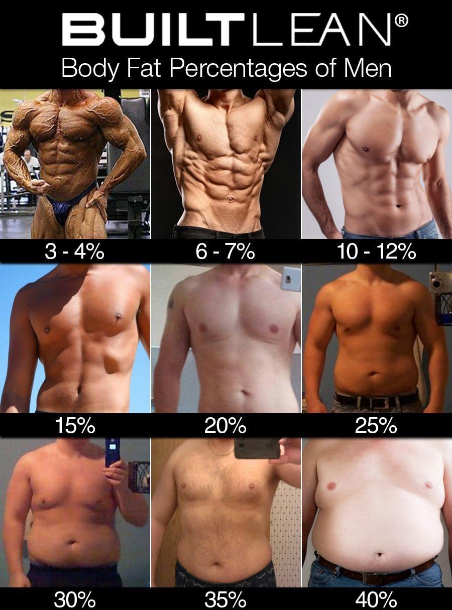 体脂肪率と見た目の関係