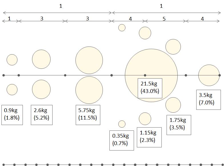 身体の各部位の重さと配置